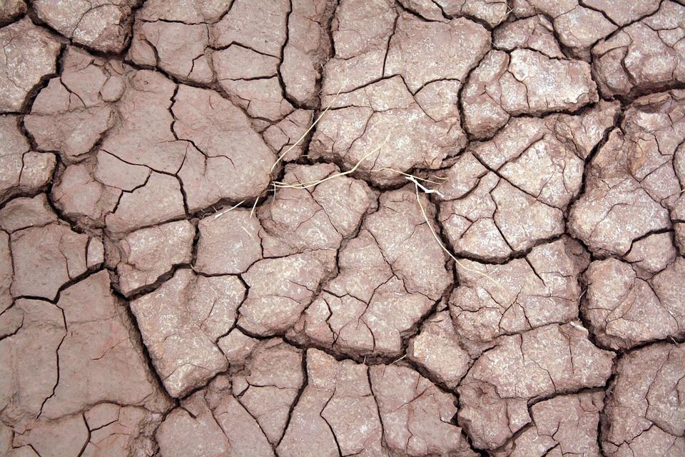 Dry, Earth, Cracked, Barren, Mud, Pattern, Arid