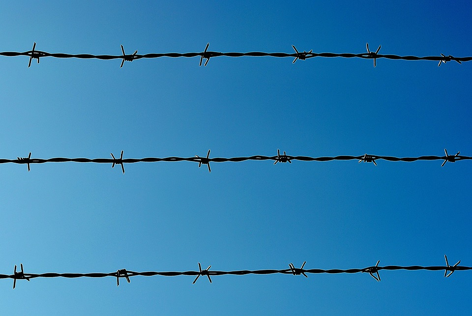 Barbed Wire, Border, Barrier, Demarcation