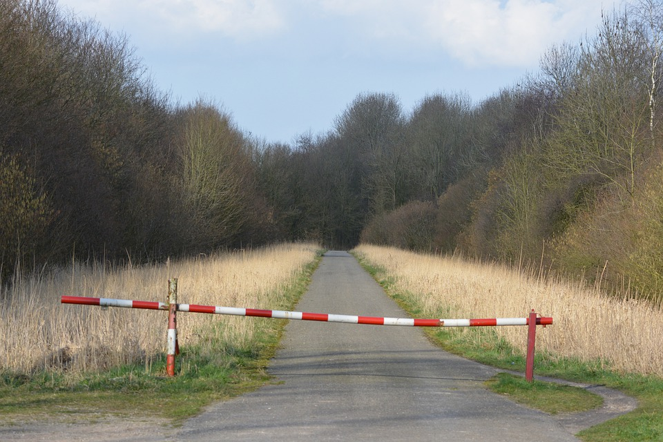 Barrier Gates, Walking Path, Nature, Forest