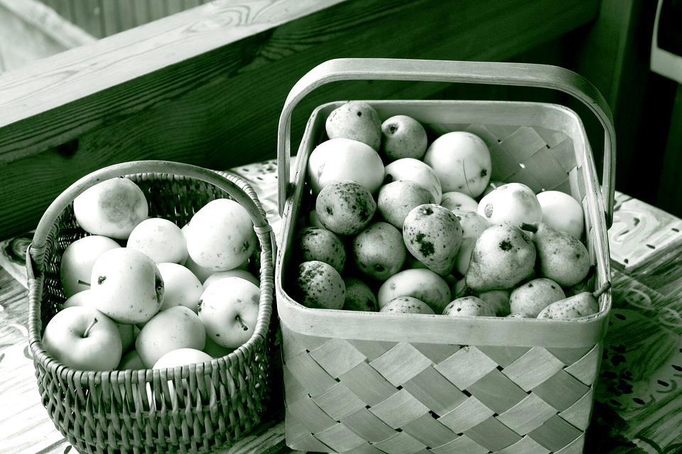 Apples, Autumn, Black And White, Basket