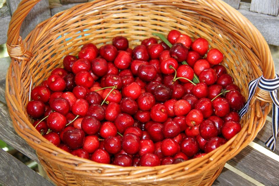 Cherries, Basket, Fruit, Garden, Nature, Harvest