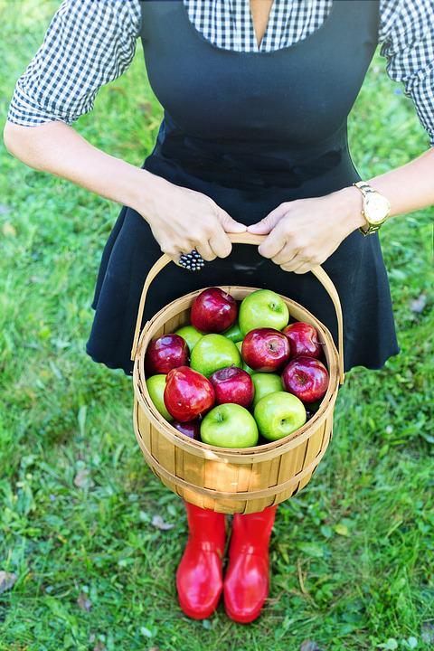 Basket Of Apples, Apple Picking, Woman, Autumn, Fall