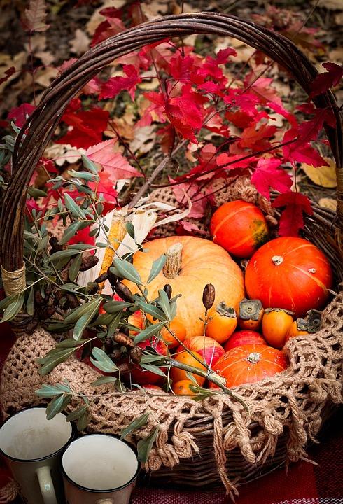 Pumpkins, Basket, Autumn, Basket Of Pumpkins