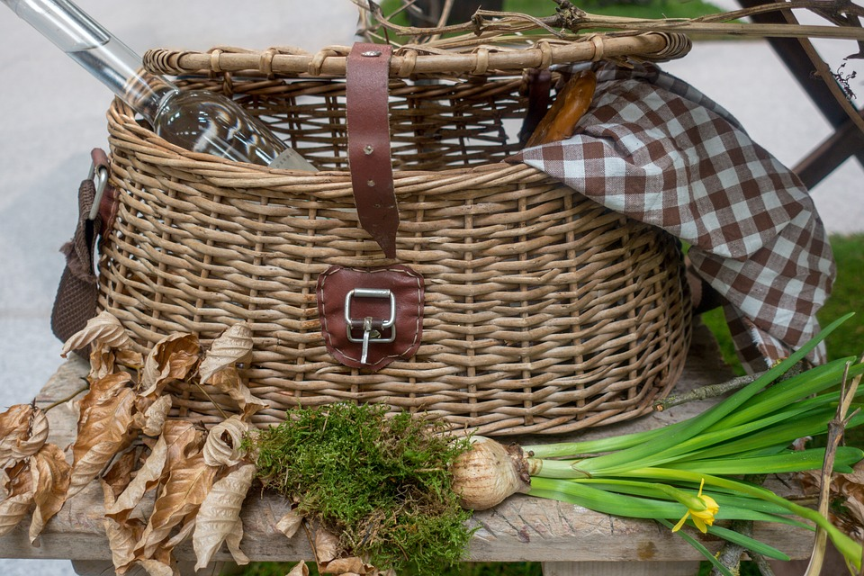 Basket, Picnic Basket, March Mug Tuber, Graze