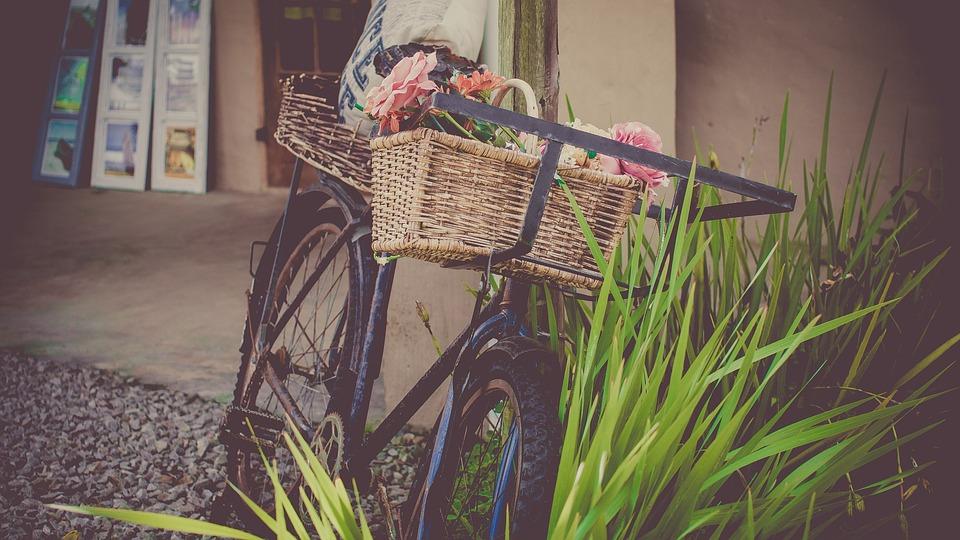 Bicycle, Flowers, Shop, Vintage Bicycle, Basket