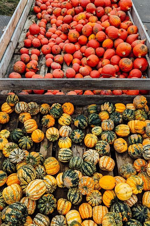 Pumpkins, Baskets, Vegetables, Wooden Baskets, Produce