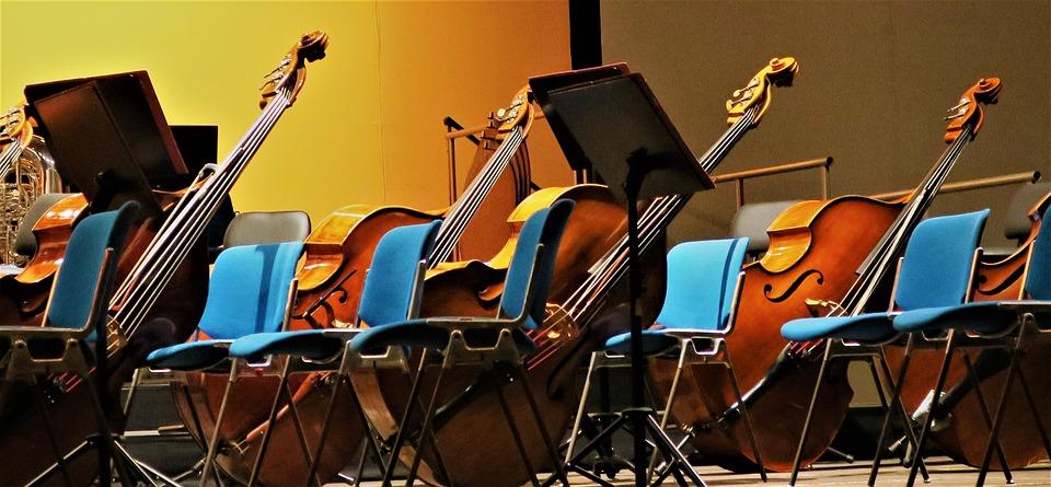 Instrument, Bass, Double Bass, Music