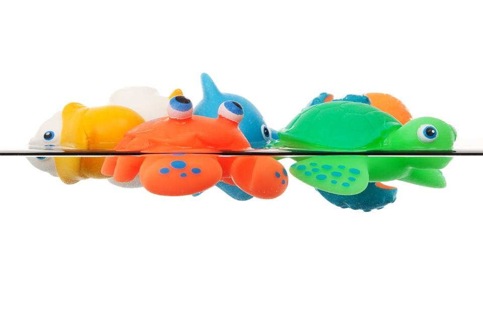 Animal, Animals, Bath, Colorful, Cute, Float, Fun