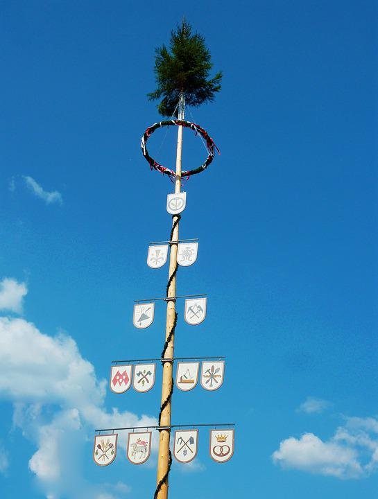 Maypole, Tree, Bavaria, Birch, Custom, Customs, Wont