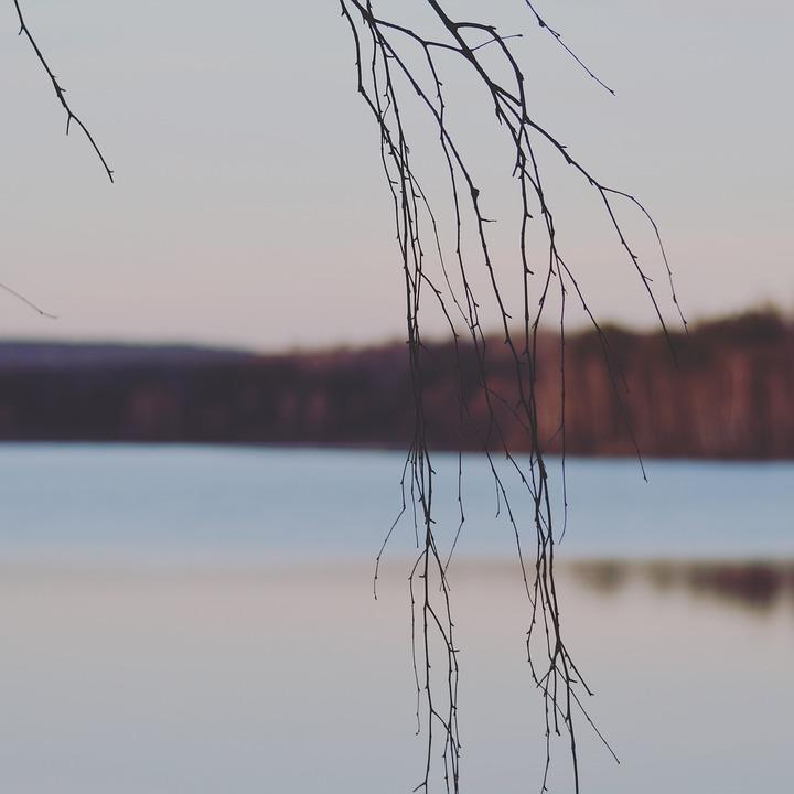 Bavaria, Lake, Seascape, Background Defocus