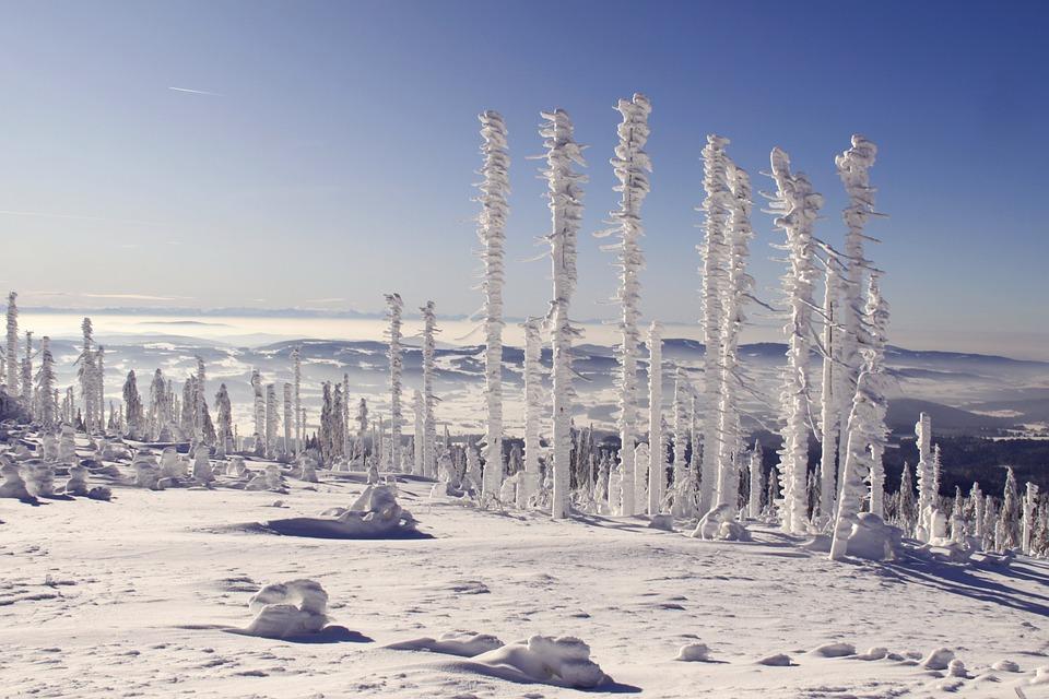 Bavarian Forest, Three Chair, Snow Landscape