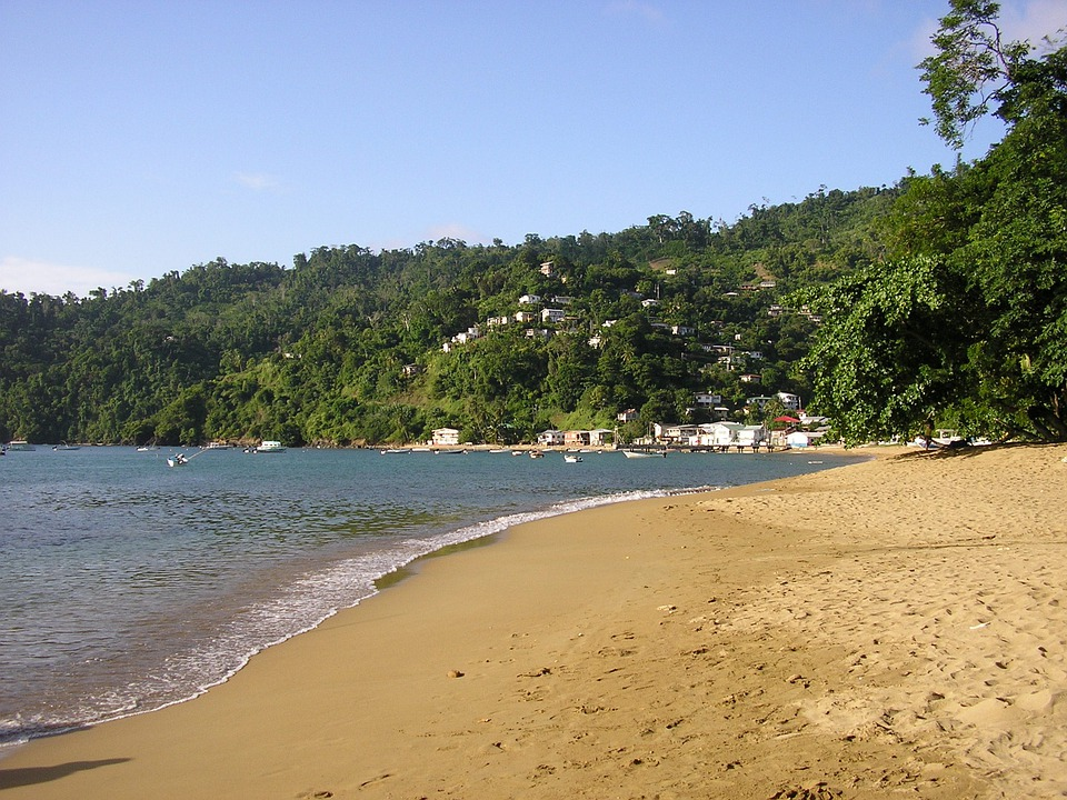 Tobago, Country, Sand, Beach, Mountain, Bay, Scenic
