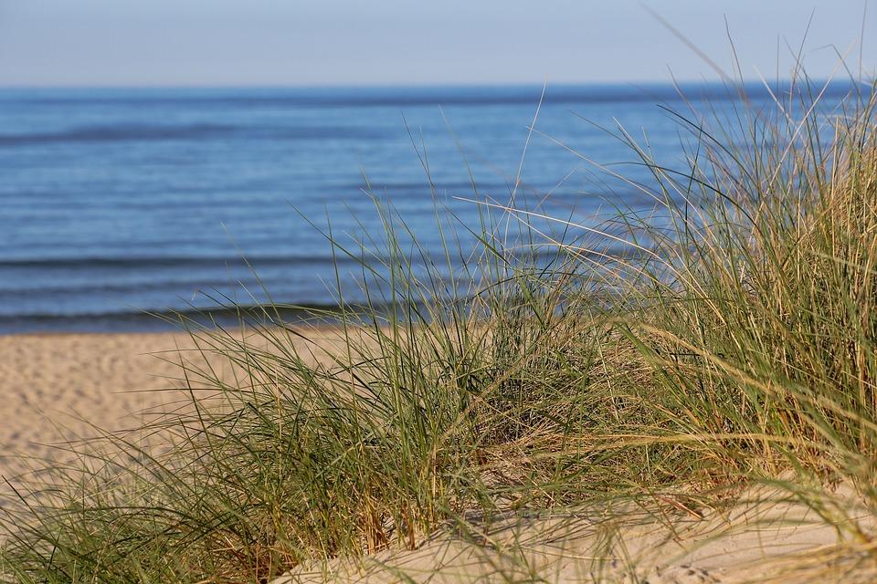 Beach, Baltic Sea, Sand Beach, Dune, Water, Baabe