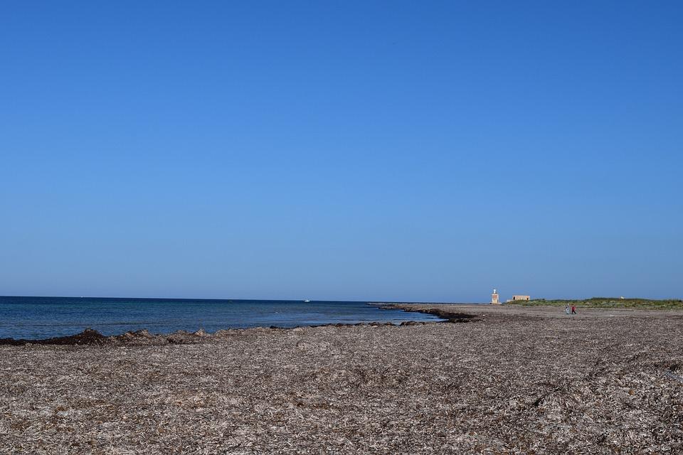 Beach, Coast, Sea, Mediterranean, Seaweed, Originally