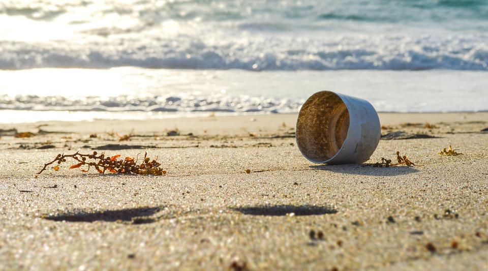 Empty, Green, Environment, Beach, Seashore