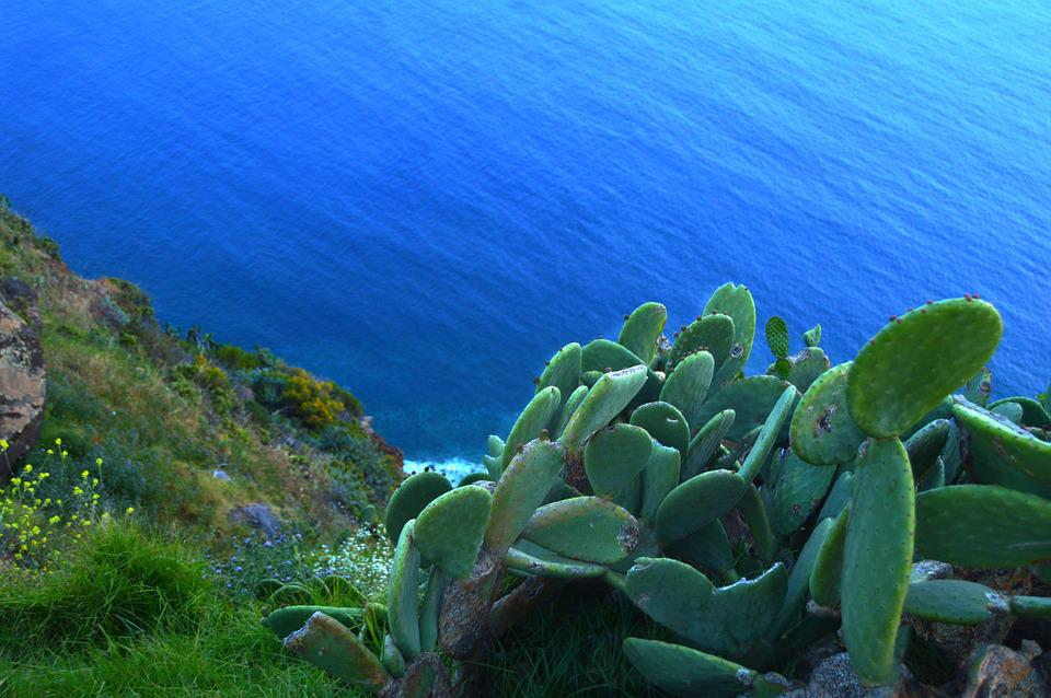Rock, Natur, Atlantic, Beach, Cliffs, Coast, Europe