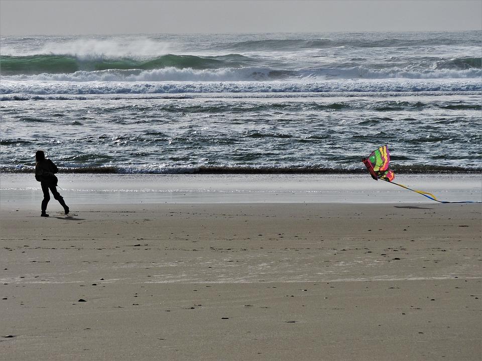 Beach, Kite, Kite Flying, Fun, Flying, Sand, Coast