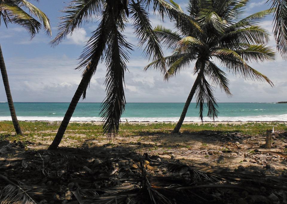 Martinique, Island, Holiday, Sea, Ocean, Beach