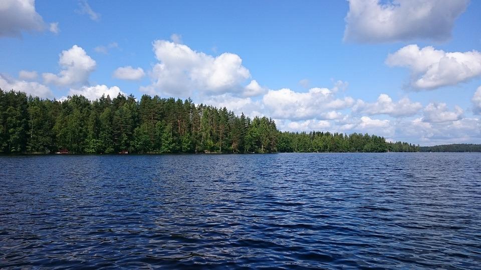 Landscape, Lake, Beach, Trees, Water, Finnish