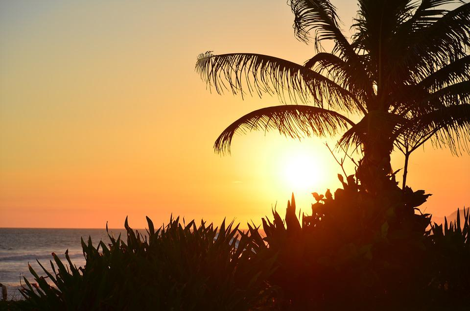 Sunset, Beach, Coconut Tree, Mar, Sol, Beira Mar