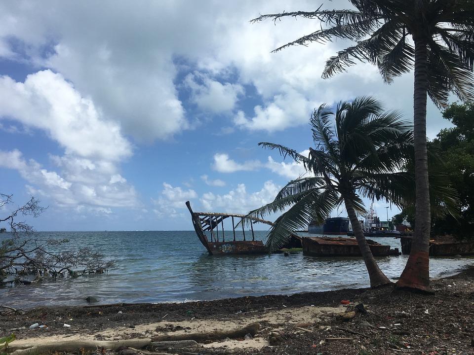 Mar, Beach, Coconut Tree, Travel, Beira Mar, Sol