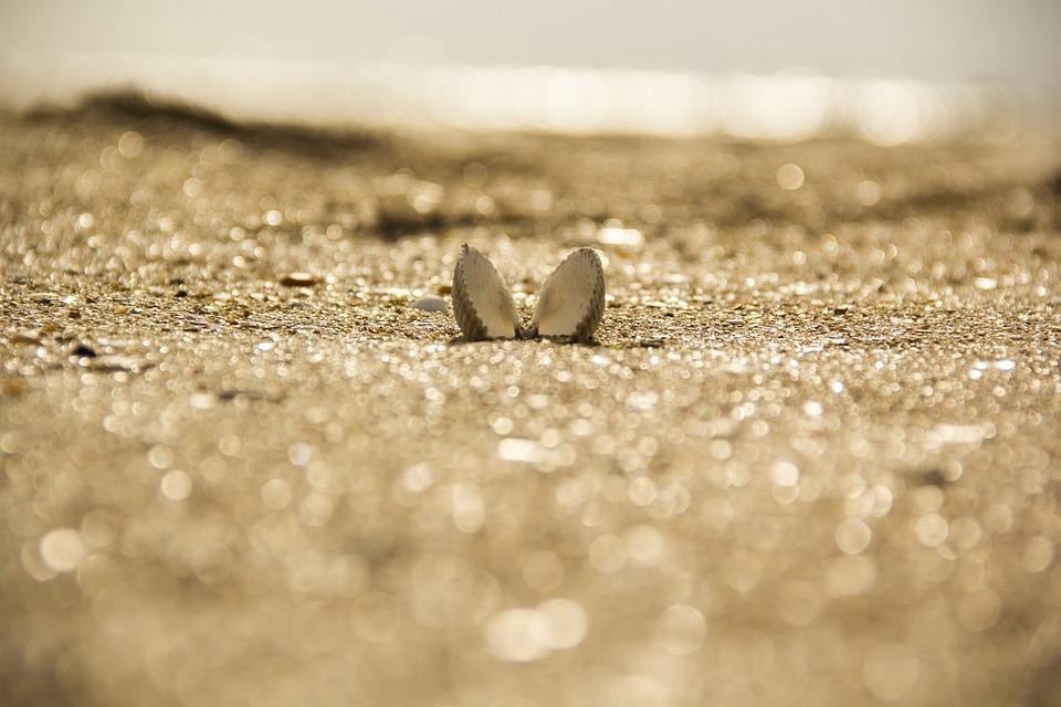 Nature, Sand, Outdoors, Beach, Summer, Is, Sun, Sea