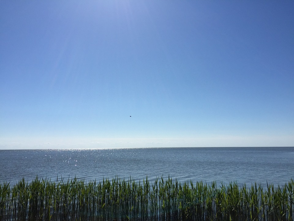 Nida, Lithuania, Water, Ocean, Beach, Summer, Nature