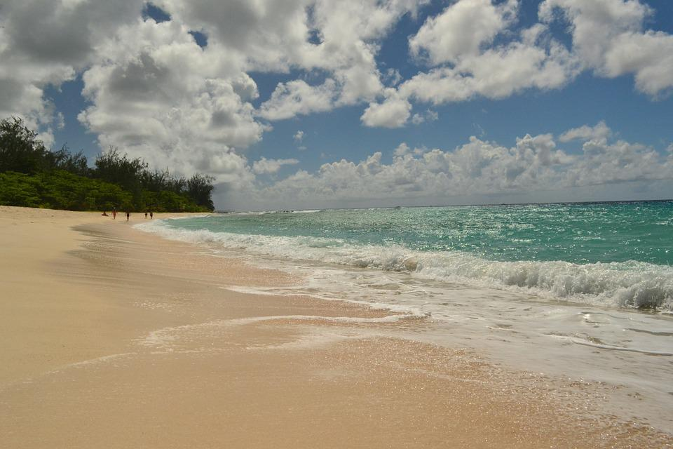 Barbados, Sea, Beach, Sand, Ocean, Wave, Idyllic