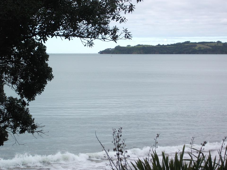 Beach, Ocean, Water