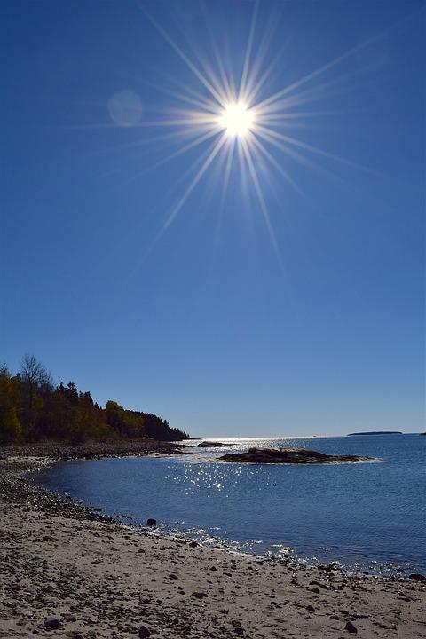 Shore, Sun, Beach, Ocean, Pine Trees, Maine, Nature