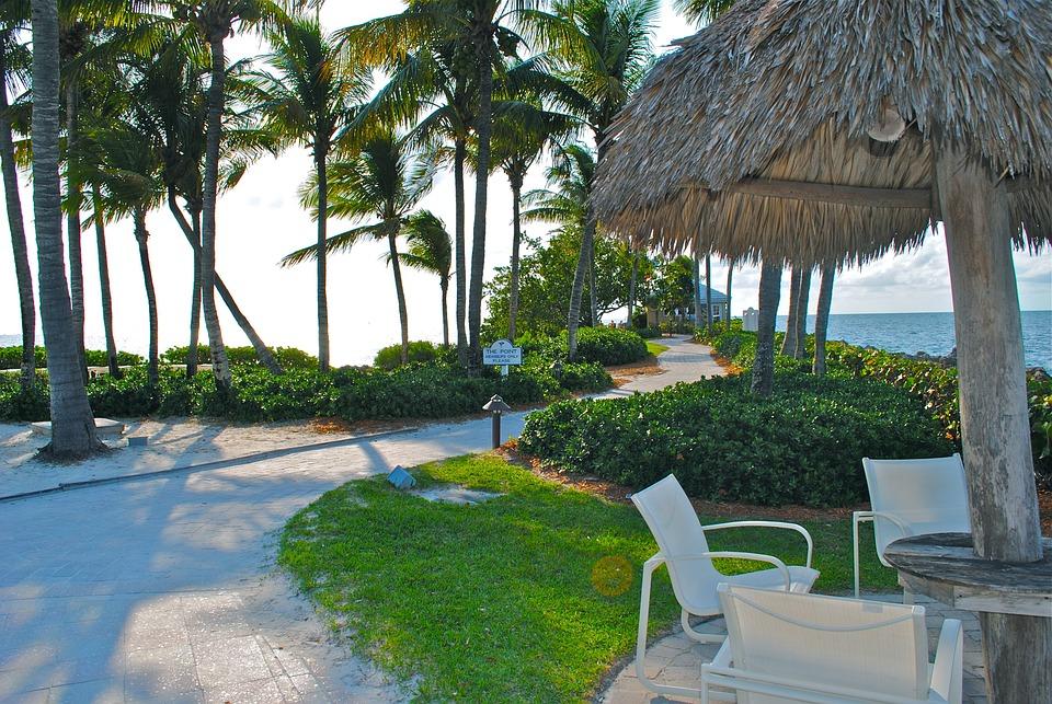 Palm Trees, Resort, Florida Keys, Hotel, Beach