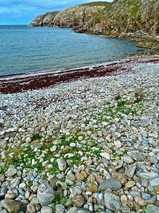 Shore, Rocky, Coast, Beach, Scenery