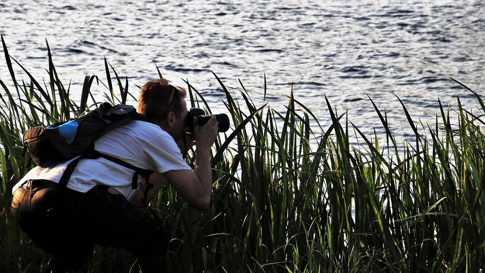 Photographer, Rushes, Beach, Lake, Nature, Water, Lens