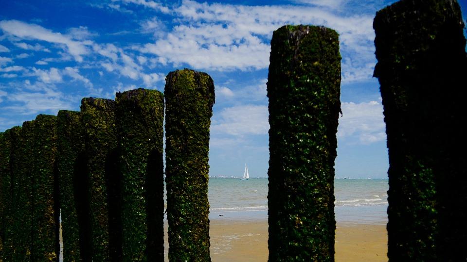 Beach, Sailing Boat, Sea
