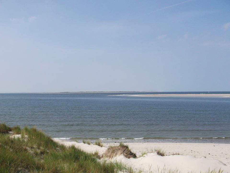 Sea, Beach, Dunes, Sand