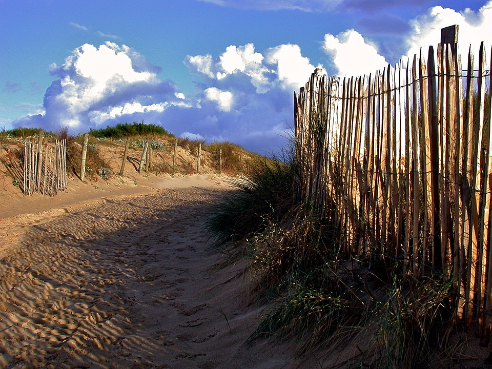 Beach, Sea, Dunes, Holiday, Coast