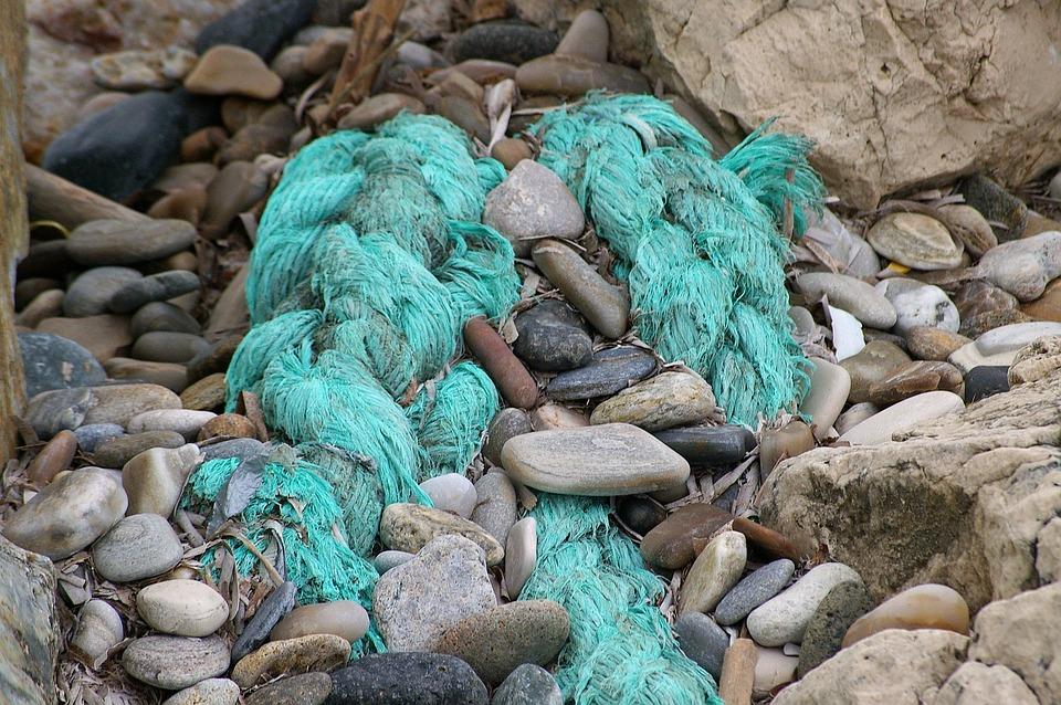 Flotsam, Beach, Sea, Ocean, Water, Coast, Pebbles