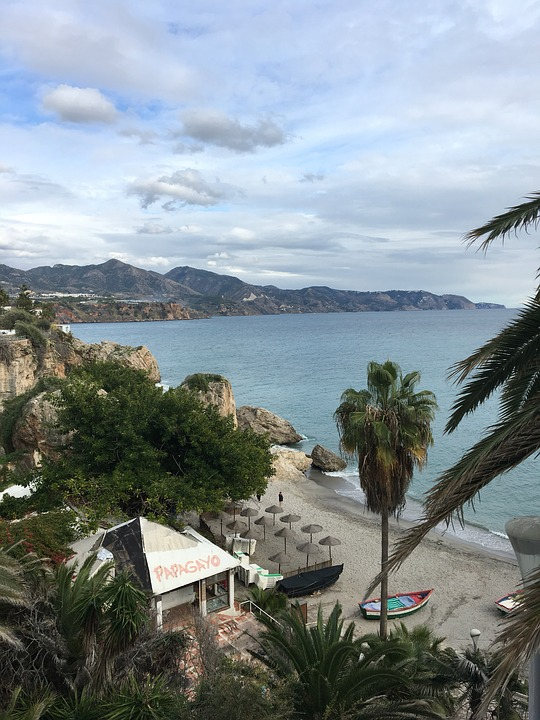 Beach, Seashore, Palm, Travel, Island