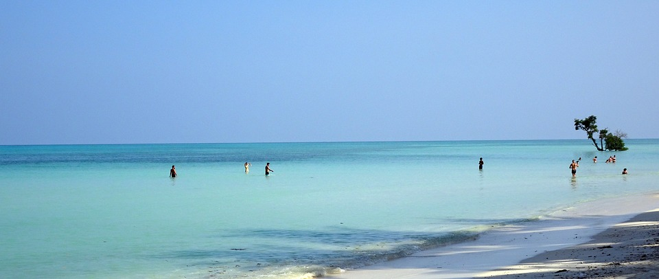 Sea, Beach, Shallow, Havelock, Bathing, Seascape