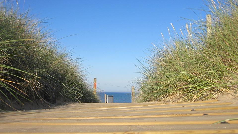 Beach, Holiday, Summer, Ocean, Web, France