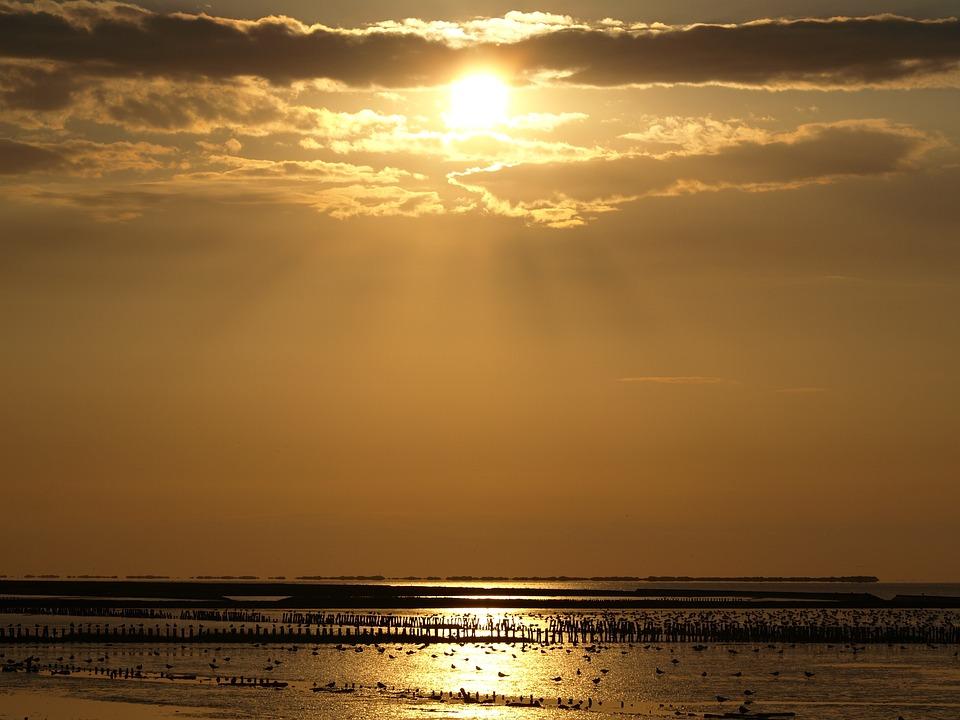 Sunset, Wadden Sea, Watts, Sky, Sea, Beach, North Sea