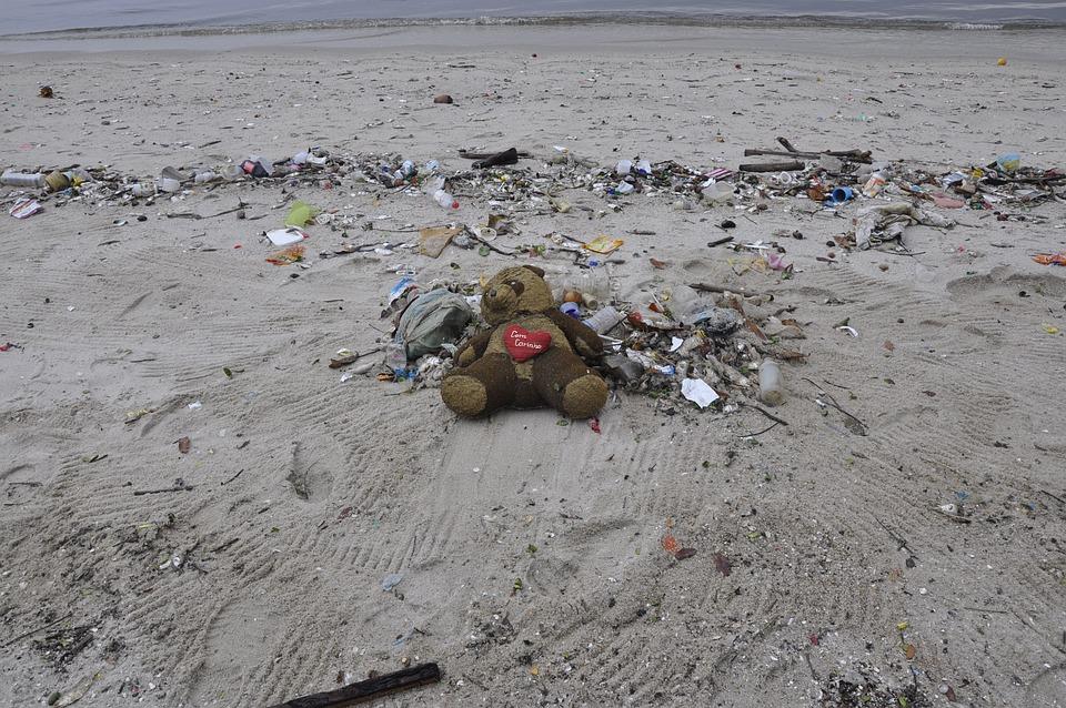 Pollution, Teddy Bear, Beach, Trash