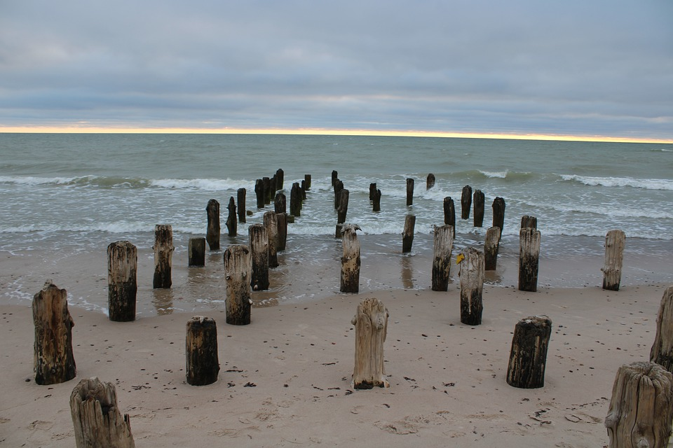 Beach, Coast, Water, Nature, Piles, Coastal Protection