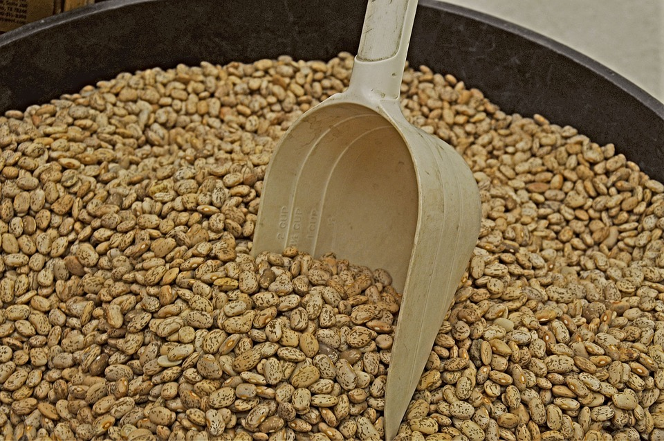 Pinto Bean, Pinto Beans, Bean, Beans, Dry Beans, Scoop