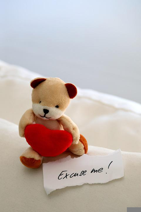 Bear, Teddy, Teddy Bear, Stuffed Animal, Heart, Cute