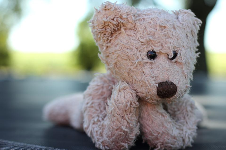 Stuffed Animal, Toy, Stuffed, Animal, Cute, Bear, Teddy