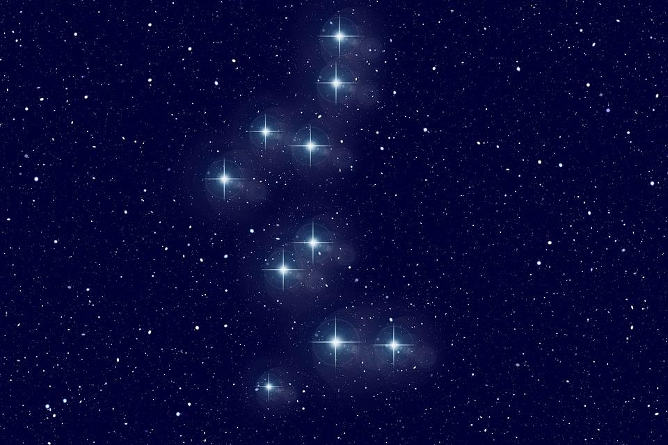Bear Guardian, Star, Constellation, Universe, Sun
