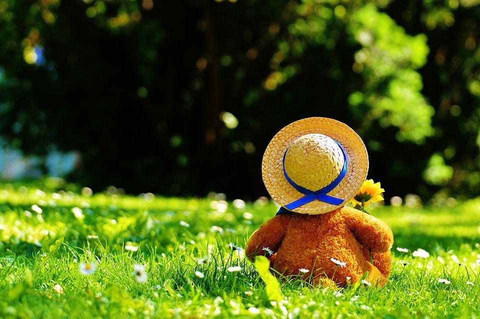 Teddy Bear, Bear, Bears, Stuffed Animal, Teddy, Cute