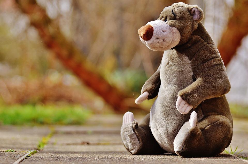 Bear, Soft Toy, Disney, Stuffed Animal, Cute, Toys