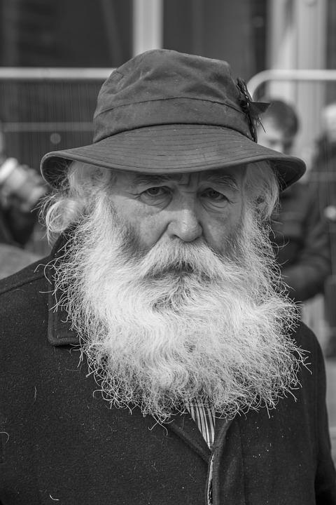 Portrait, Street, People, Man, Hat, Beard